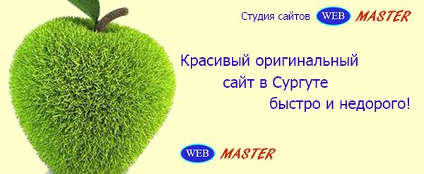 Разработка сайта в веб студии Сургут